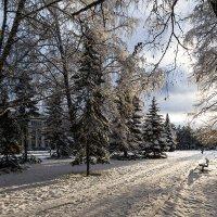 Зимний Академгородок :: Vadim Piottukh