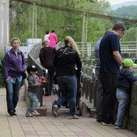 Прогулки у моста 2. :: Larisa Gavlovskaya