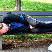 Бездомный. :: Алла Шапошникова