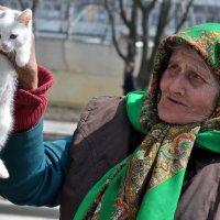 ...вот, котёночка купила... :: Ольга Нарышкова