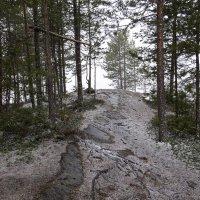 Весенний снег :: Игорь Чубаров