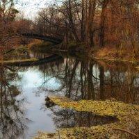 Осень в Коробовых Хуторах :: Tatiana Kretova