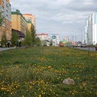 Наша улица :: лиана алексеева