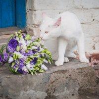 поймал букет невесты) :: Катерина Сергунина