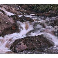Молочные реки :: Елена Шторм