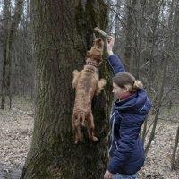 Летающая собака (5) :: Николай Ефремов