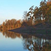 Утро на озере :: Юрий Цыплятников