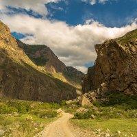 долина реки Чулышман, Горный Алтай :: Дмитрий Кучеров