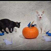 Кошки -мышки :: Алиса Бронникова