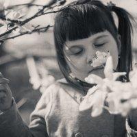 А у нас в саду магнолии цветут!! :: Варвара &&