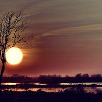 в объятиях солнца :: Алексей -
