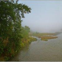 Туман над обмелевшей рекой :: Любовь Потеряхина