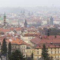 Мокрая Прага :: vit-74