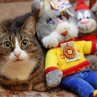 Наш кот Филя. :: Андрей Дурапов