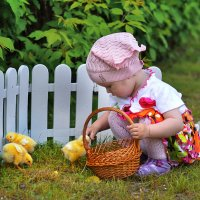Цыплятки :: Алиса Бронникова