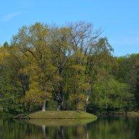 На озере.. :: Олег Баламатюк