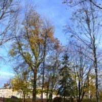 Осень... осень :: Angelika Faustova