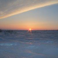 Снежное море в степи :: Сухраб Бекжанов