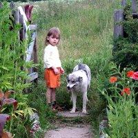 Добрая Собака :: Евгения Семененко