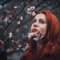 Диана :: Виктория Андреева