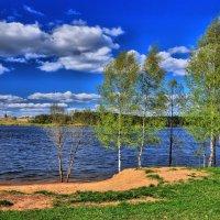 Майский пейзаж :: Андрей Куприянов