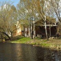 на берегу реки  Колыванец :: Сергей Кочнев