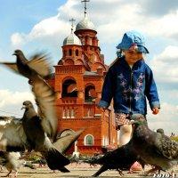 Девочка и голуби. :: Анатолий Борисов