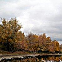 Река осенью :: Татьяна Королёва