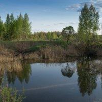 В краю озёр 3 :: Олег Козлов