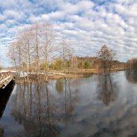Большая вода в маленькой реке :: Александр Бархатов