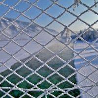 В плену зимы :: Tatiana Willemstein