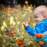 Выбираем цветочки :: Денис Дешин