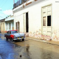 After rain :: Arman S