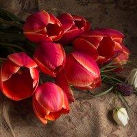 Цветы... :: Ирина Чикида
