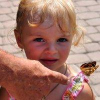 ...бабочка... :: Ольга Нарышкова