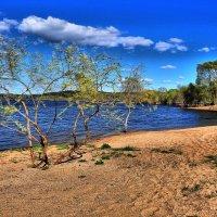 Будущий пляж :: Андрей Куприянов