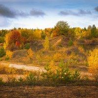Осенние краски... :: Александр Никитинский