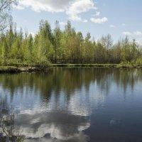 Весенний пейзаж :: Андрей Чиченин