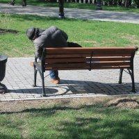 Весна вернулась... :: Владимир  Зотов