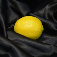 lemon :: Inna Kuzmitsky