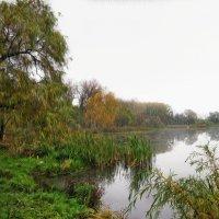 На озере :: Анатолий Михайлович