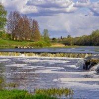 река Вента :: Ирэна Мазакина