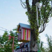 sweet cafe :: Виктория Мацук