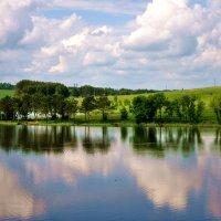 ...река Недна... :: Ольга Нарышкова