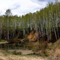 Бобриный пруд :: Павел Пудов