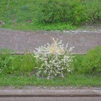 Град весной))) :: Маргарита Королева