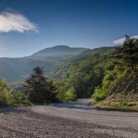 Горная дорога :: Natalia Fedina