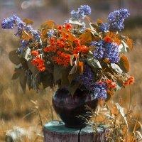Горшочек с цветами 2 (осенний вариант) :: Elena Bardizhka