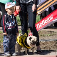 Когда я вырасту, пойду служить с Мухтаром на границу :: Юлия Топоркова