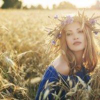 в лучах солнца :: Екатерина Васюкова